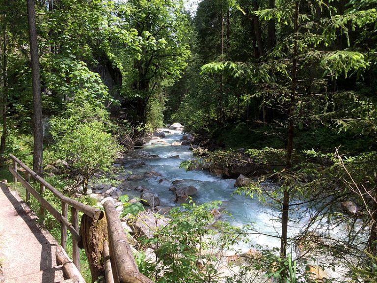 Pfade am Fluss